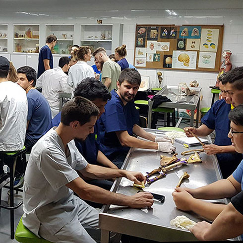 Physiotherapy students in Argentina